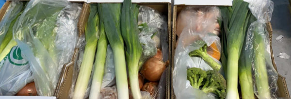 Repartits 250 lots alimentaris a famílies vulnerables: l'aposta per una alimentació de qualitat